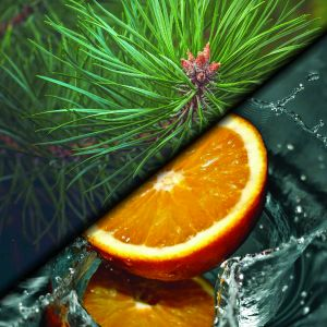 Orange / Ceder essential oil